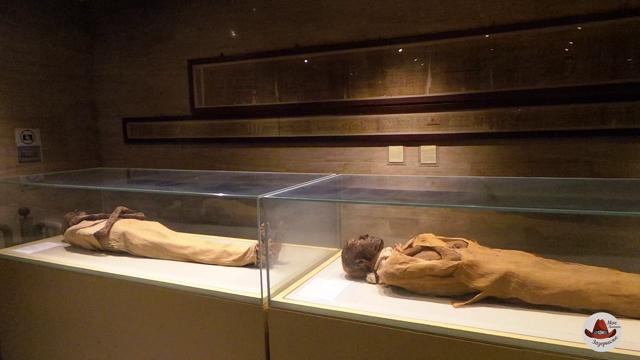 Зал мумий