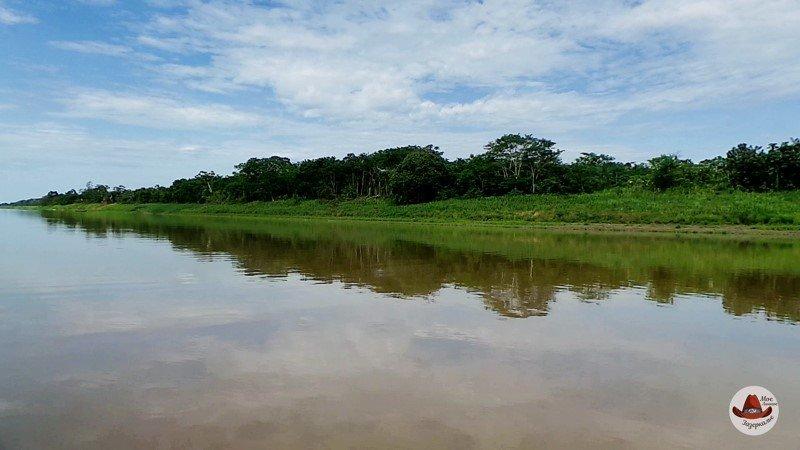 Берега Амазонки.