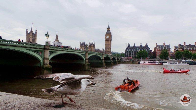 Сокровища Темзы и утренний Лондон