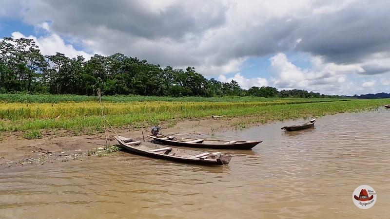 Берег Амазонки.
