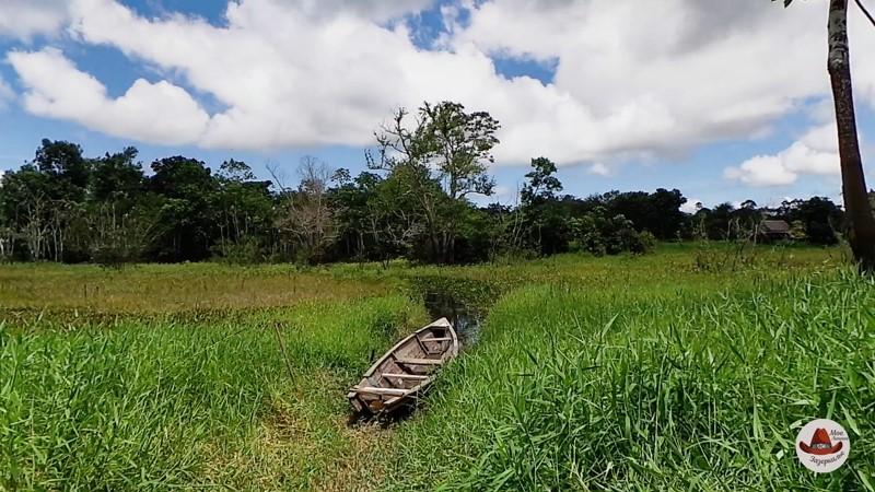 Путешествие по Амазонке.Одинокая лодка перед болотом.